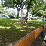 Photo of Sigmund Freud Park