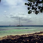 Photo of Excursion a la Isla Saona