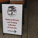 Foto de National Bonsai & Penjing Collection