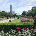 Summer in Sapporo Odori Park