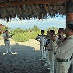 Our Incredible Wedding Musicians!