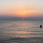 Holland State Park Beach 사진
