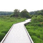 Huntley Meadows Park Photo