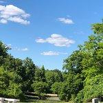 Фотография Forest Lawn