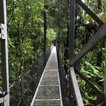 Photo of Mistico Arenal Hanging Bridges Park