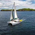 Private Sailing Snorkel and Sunset Cruise in Flamingo