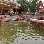 Foto di Chakra Tirth Temple