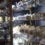 Teapot displays