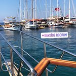 Photo of Bayside and Tora Boat Tours