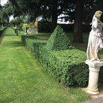 Fantastisk trägård