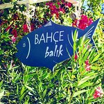 Photo of Bahce Balik Restaurant