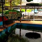 Kolam ikan nile perch
