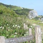 White Cliffs Trail