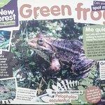 New Forest Reptile Centre Photo