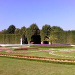 Photo of Schonbrunner Gardens