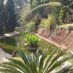 jardim dos Pinhais Ecco Parque