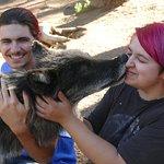 Colorado Wolf and Wildlife Center照片