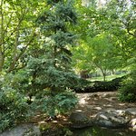 Japanese garden, Lithia Park, Ashland, OR