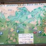 Bois de Païoliveの写真