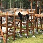 Pandat lötköttelevät noin 10 tuntia päivässä. Talossa on myös nykyaikainen hoitovälineistö mahdo