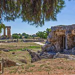 Temple of Apollo in background