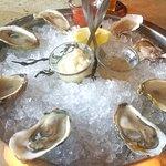 Oyster sampler.