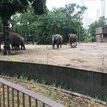 Photo de Berlin Zoological Garden