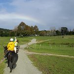 Foto de Horse Riding Warkworth