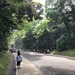 Meiji Jingu Shrine