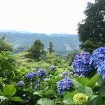 Foto de Mt. Takao