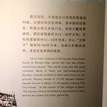 Xi'an Banpo Museum