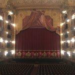 Foto de Teatro Colon