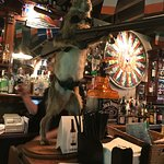 Awesome pub, rabbit's very welcoming🙈😛.  Great location