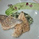 Photo of Marina Restaurant