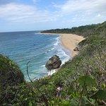 Survival Beach照片