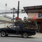 Photo of Mr Samui Transport - Private tours