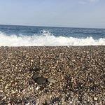 תמונה של La Spiaggia Libera di Letojanni