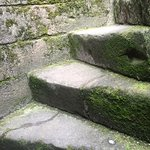 Steps to?