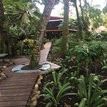 Bilde fra Hotel Banana Azul