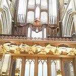 More Angles & Organ