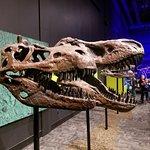 TELUS World of Science - Edmonton Photo