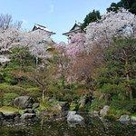 April Cherry Blossoms Outside of Castle