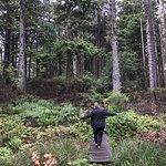 Cape Flattery Trail照片
