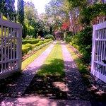 Harleston Village garden