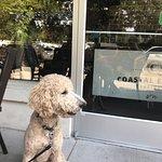 Foto de Savannah Coffee Roasters