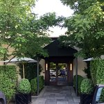 Lovely tree-lined entrance to a great restaurant!