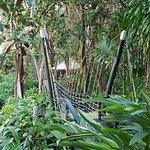 صورة فوتوغرافية لـ Kula Wild Adventure Park