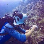 Photo de Roctopus Dive