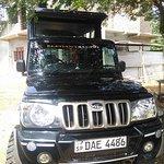 get the chance for to ride the yala , Bundala, Udawalawa safari with this