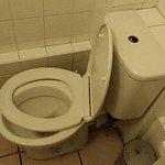 Broken toilet seat, broken flush mechanism, dirty bin lid and floor
